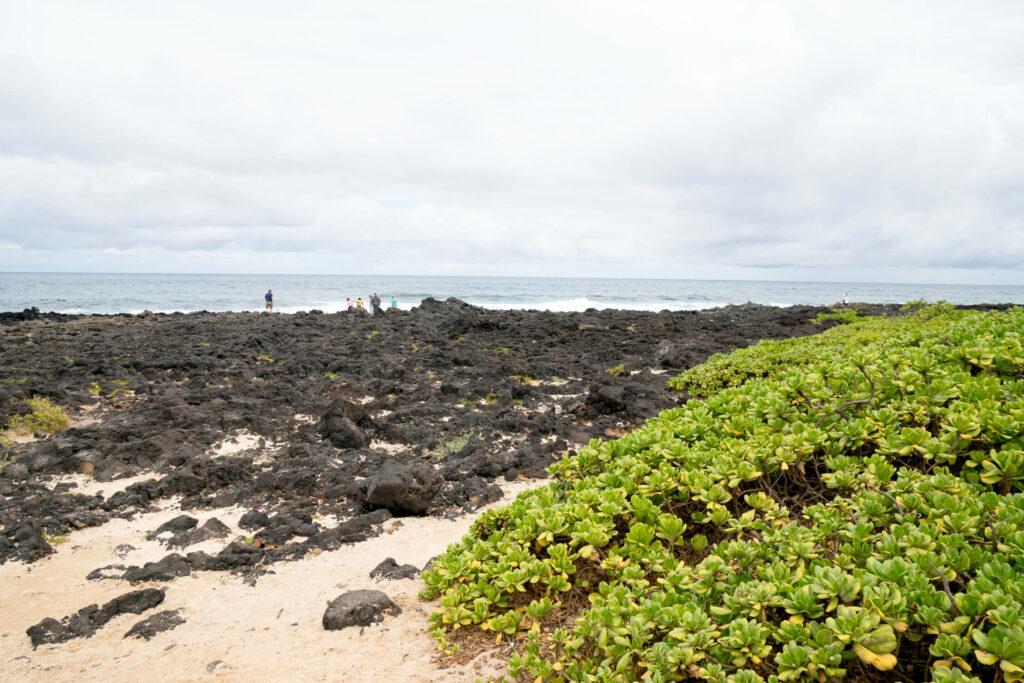 黒い溶岩流跡と白砂