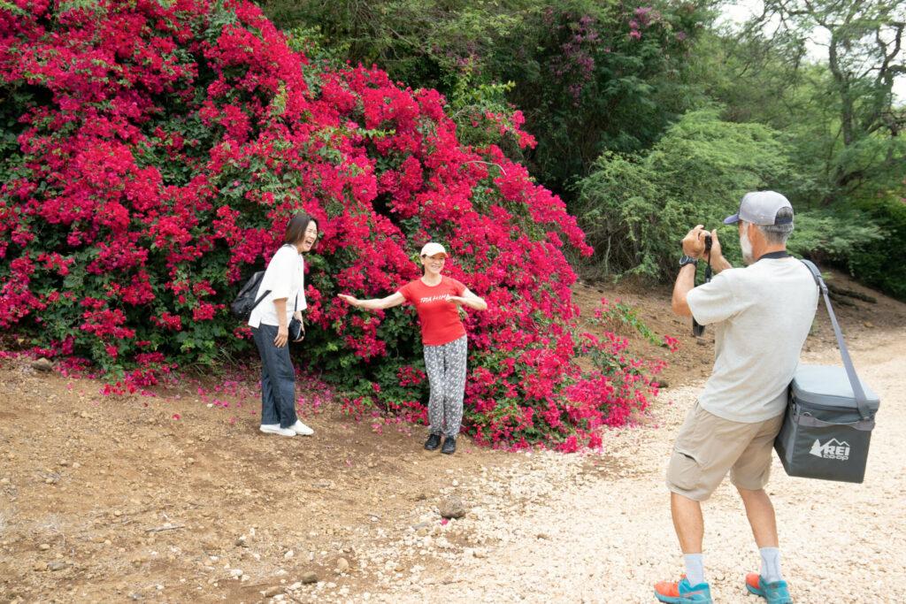 ブーゲンビリアが咲き誇る前で記念撮影