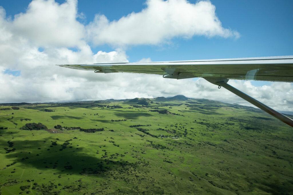 緑が濃い高原