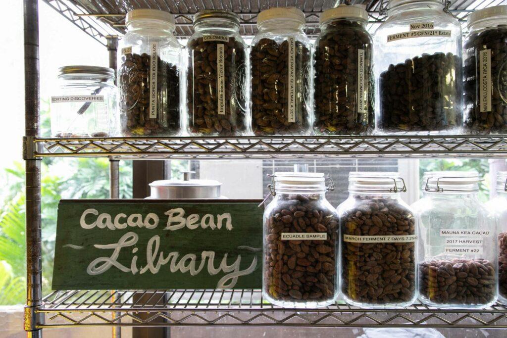 世界中のカカオ豆を集めたライブラリー