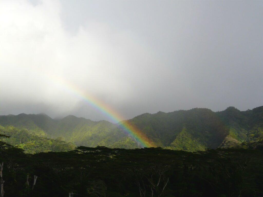 虹が見られる